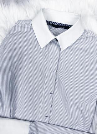 Крута базова сорочка в смужку zara3