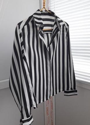 Рубашка zara, в полоску