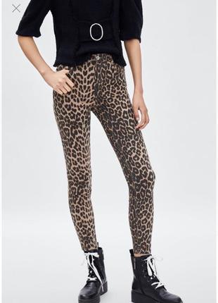 Джинсы высокая талия леопард animal print zara оригинал