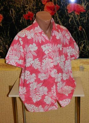 Рубашка мужская летняя яркая розовая с белым размер 54-56 sag harbor sport.