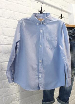 Голубая рубашка zara