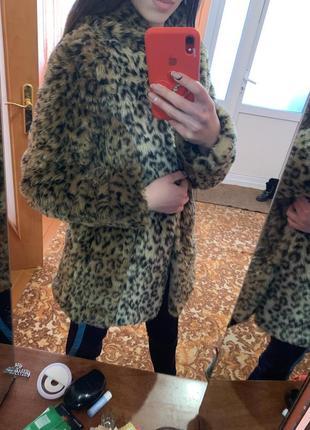 Леопардовая шубка от bershka