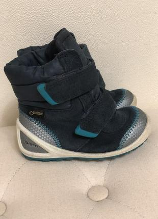 Демисезонные ботинки сапоги ecco biom 20 - 21 р.в идеале, деми1