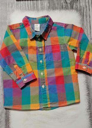 Яркая рубашка hm 9-12-18 мес.