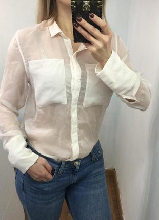 Красивая прозрачная блузка