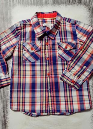 Рубашка в клетку, рубашечка in extenso