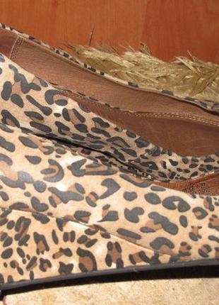 Леопардові стильні туфлі р37 next еко замша