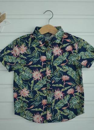 3-4 года, рубашка,primark