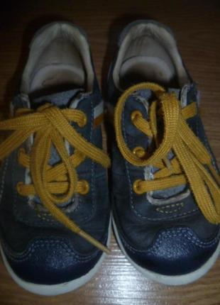 Туфельки-кроссовки кларкс для модника2