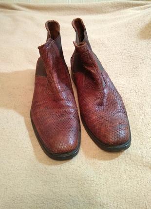 Туфли мужские elite model 42