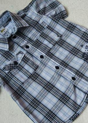 Big sale! новая стильная рубашка papagino на 4 года рост 104 см