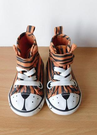 Кеды h&m для малышей тигр 18-19 размер