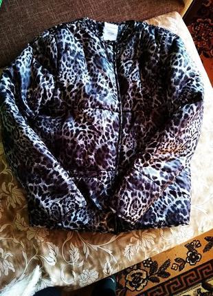 Куртка демисезонная леопардовая без капюшона