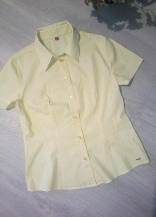 Брендовая рубашка esprit