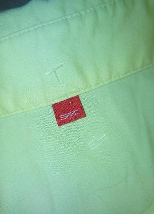 Брендовая рубашка esprit3 фото