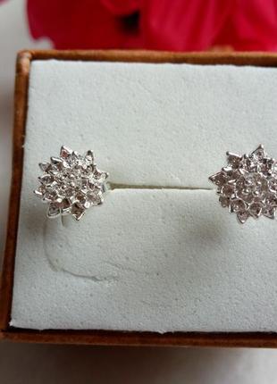Серьги-гвоздики,серебро 9254