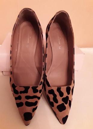 Замшевые туфли  leopard