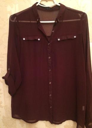 Модная брендовых блузка