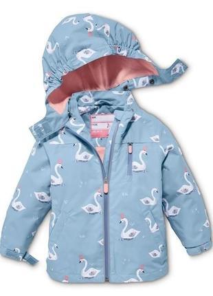 Ветро-водонепроницаемая куртка типа ветровки тсм tchibo размер 110-116