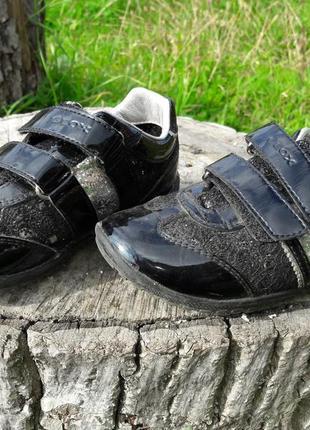 Лаковые кроссовки geox для девочки