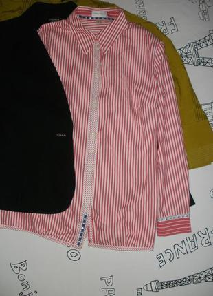 Блузка, рубашка классическая peter hahn в бело-красную полоску
