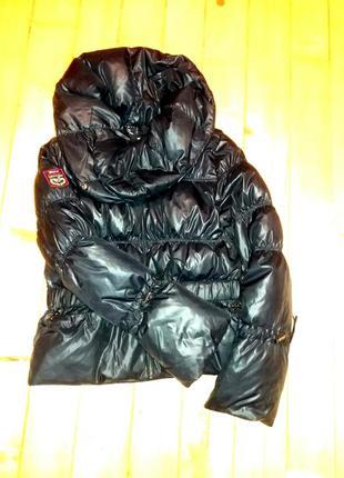 Куртка, парка, пуховик, гусиний пух зимова демісезон