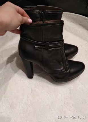 Ботинки nero giardini1