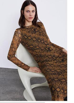 Платье змеиное оригинал zara animal print змеиный принт макси длинное1