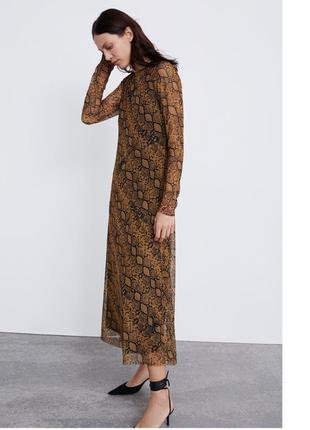 Платье змеиное оригинал zara animal print змеиный принт макси длинное3