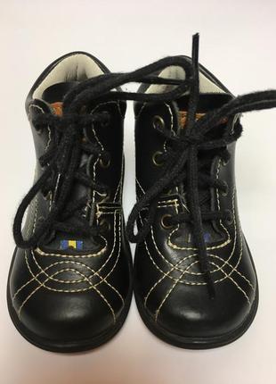 Демисезонные ботинки шведской фирмы kavat (кават)р 201 фото