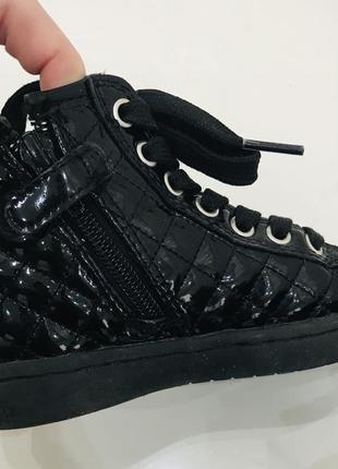 Ботинки  geox3