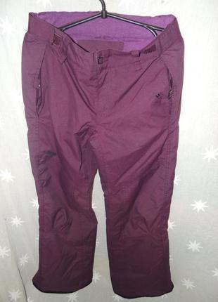 Зимние горнолыжные штаны тсм 46-48
