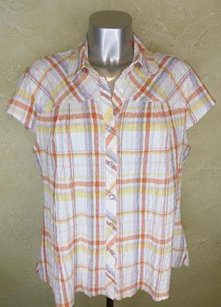 Удобная хлопковая рубашка в клетку на кнопках east coast 4xl 20 батал