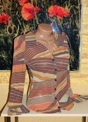 Блуза сетка бежевая с коричневым размер 42-44 hennes collection.