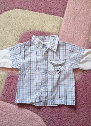 Рубашка кофта реглан на мальчика