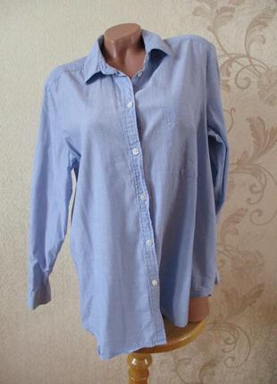 Рубашка базовая/голубой/хлопок