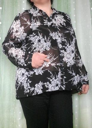 Шифоновая блузка с удлиненной спинкой в красивый цветочный принт
