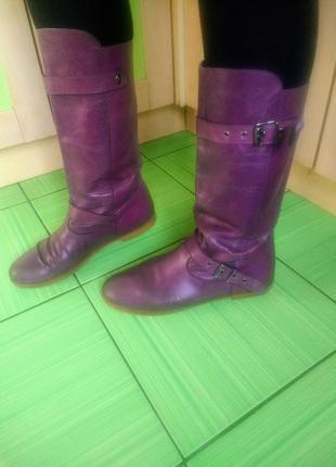 Фиолетовые сапоги кожа натуральная качество sacha