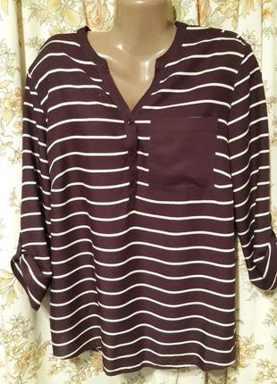 Блуза, рубашка charles-voegele