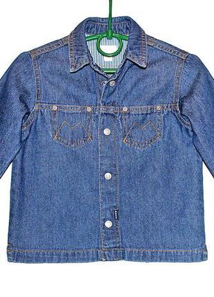 Джинсовая фирменная рубашка mexx на малыша 18 месяцев