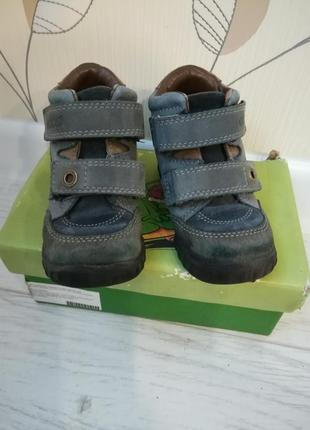 Ботинки ecco для мальчика,24 размер7