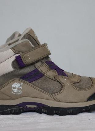Демисезонные ботинки timberland2
