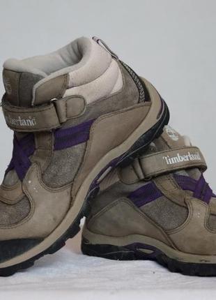 Демисезонные ботинки timberland3