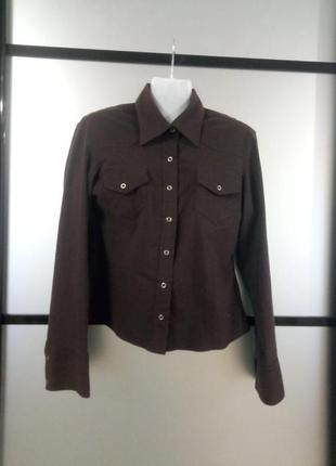Женская коричневая рубашка на кнопочках. рубашка классика