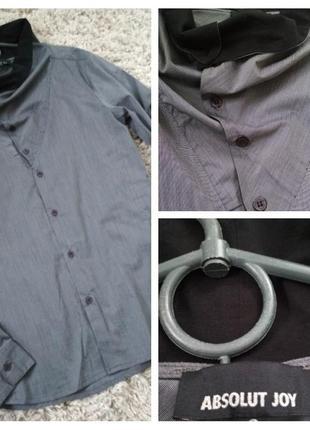 Шикарная мужская рубашка, absolut einstein,p. s