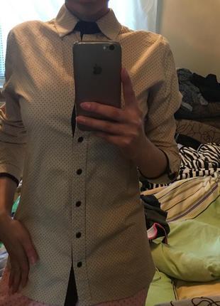 Рубашка/блузка классическая офисная школьная деловая хлопок/коттон