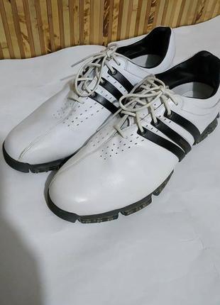 Кросівки adidas3