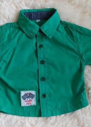 Яскрава зелена сорочка