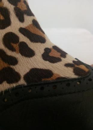 Стильные демисезонные ботинки cavalier mama en baby7