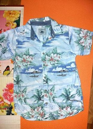 Фирменная летняя рубашка 12л tu